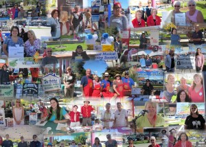 non profit fair 2015 collage